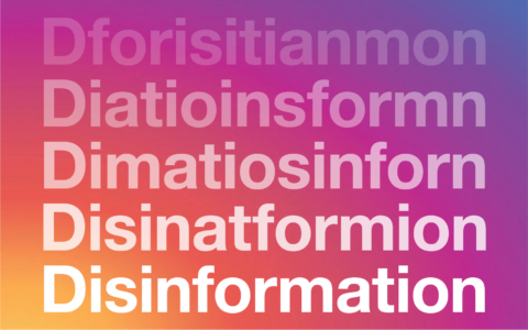 Disinformation on Instagram