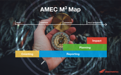 Measurement Maturity Mapper AMEC
